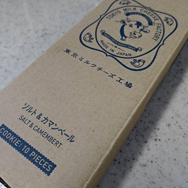 東京ミルクチーズ工場10個入り